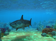 Fish  screensavers  nfs3DUnderWaterLife4