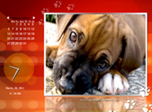 Calendar  screensavers  nfsCoolDogs