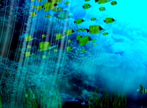 Fish  screensavers  nfsDepth