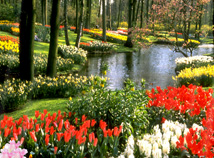 Spring  screensavers  nfsFlowerPark