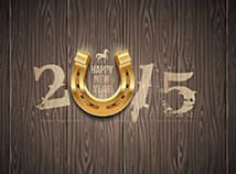 New Year  screensavers  nfsHorseshoe2015