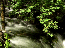 Mountains River  screensavers  nfsMountainRiver01HD