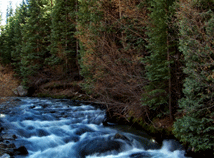 Mountains River  screensavers  nfsMountainRiver03HD