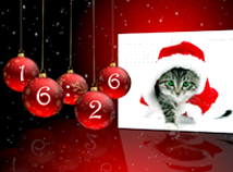 Digital Clock  screensavers  nfsNewYearCat