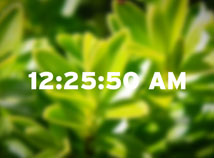 Digital Clock  screensavers  nfsSpringForest