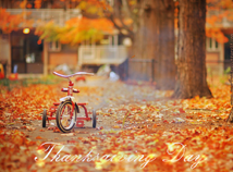Thanksgiving day  screensavers  nfsThanksgivingBicycle