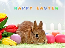 Easter  screensavers  nfsTulipsBunnyEaster