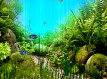 Fish  screensavers  nfsUnderWater10