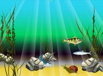 Fish  screensavers  nfsUnderwater2