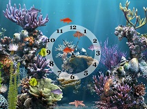 Fish  screensavers  nfsUnderwaterWorldClock