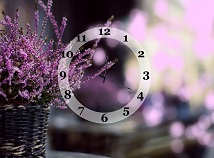 Nature  screensavers  nfsVioletSpringClock
