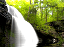 Nature  screensavers  nfsWaterfallsReflection