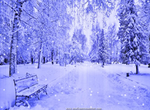 Winter  screensavers  nfsWinterBench