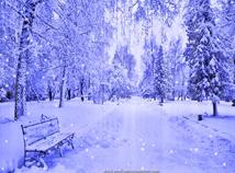 Seasons  screensavers  nfsWinterBench