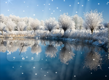 Seasons  screensavers  nfsWinterLoveliness