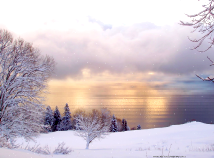 Nature  screensavers  nfsWinterSunrise