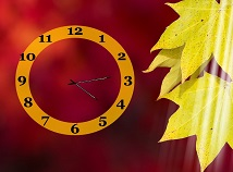 Autumn  screensavers  nfsYellowMapleClock