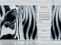 Animal world  screensavers  nfsZebra