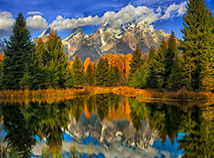 AutumnCame