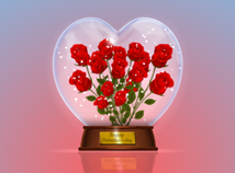 Valentinsrose