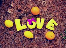 Gelbe Liebe